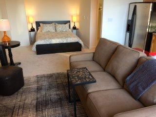 Junior 1 Bedroom Unit Near AT&T Ball Park - San Francisco vacation rentals