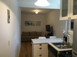Beautiful 1 Bed 1 Bath Apartment - Manhattan vacation rentals