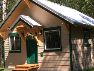 Baby Dall Cabin: Alaskan Luxury in the Forest - Talkeetna vacation rentals