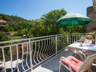 2 bedroom Apartment with Garden in Sipanska Luka - Sipanska Luka vacation rentals