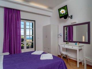 Emily Apartments - Sea View - in Dassia - Dassia vacation rentals