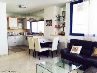 ROTCHILD SHEINKIN - Tel Aviv vacation rentals