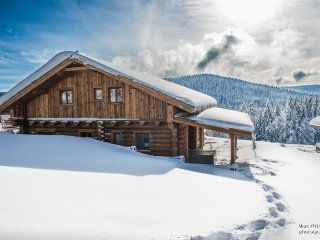 Nice Chalet with Internet Access and Central Heating - Liezey vacation rentals