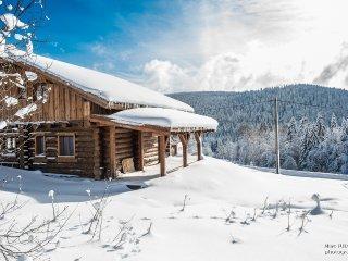 Chalet rondins neuf - 8p - WiFi et Jacuzzi - Liezey vacation rentals