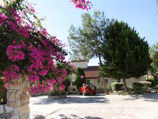 Alonia Villa - Pissouri vacation rentals