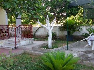 2 bedroom Condo with Parking in Colonia Elena - Colonia Elena vacation rentals