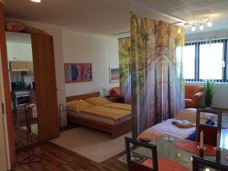 Komfortables Ferienapartment in Köpenick - Berlin vacation rentals