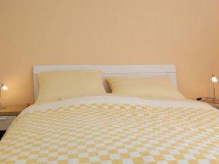 2 bedroom Condo with Internet Access in Slano - Slano vacation rentals