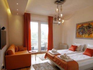 TANGO - Belgrade vacation rentals