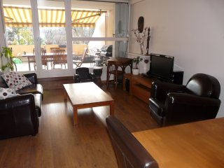 Grand appartement avec terrasses à 10min  de Paris - Epinay sur seine vacation rentals