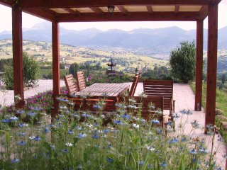 Romantic 1 bedroom Condo in Cupramontana - Cupramontana vacation rentals
