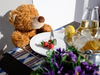 Follow The Bear in Puerto Adriano - El Toro vacation rentals