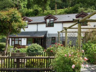 3 bedroom House with Internet Access in Abergynolwyn - Abergynolwyn vacation rentals