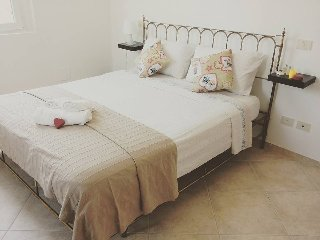 Nice Bed and Breakfast with Internet Access and Garage - Frassineto Po vacation rentals
