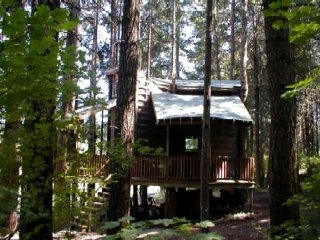 Nice House with A/C and Balcony - White Salmon vacation rentals
