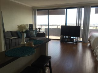 Downtown Houston Penthouse Studio Apartment - Houston vacation rentals