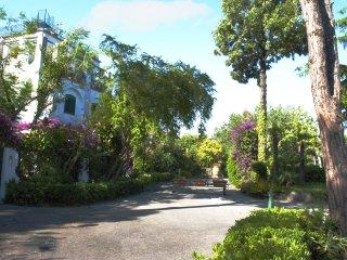 ischia porto appartamento centralissimo - Ischia Porto vacation rentals
