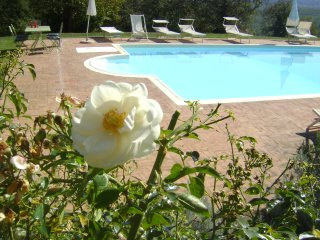 6 bedroom House with Internet Access in Montalcinello - Montalcinello vacation rentals