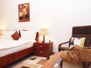 """""""STUDIO 52"""" CERT ACCOMMODATION BUCHAREST CENTRE - Bucharest vacation rentals"""