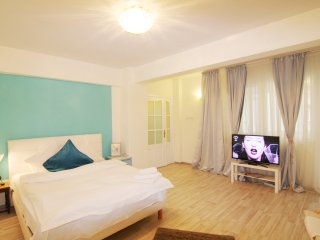 STUDIO PARK - Bucharest vacation rentals