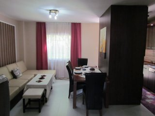 Two apartments for 15 ppl total and free parking - Sarajevo vacation rentals