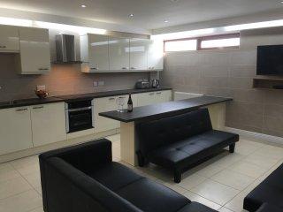 Dinas Apartments No. 5 - Liverpool vacation rentals
