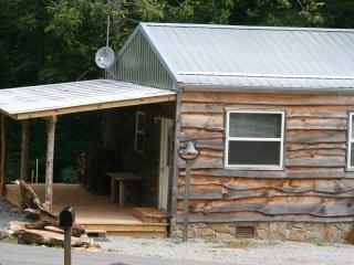 Tiny Rustic Mountain Cabin retreat - Elk Park vacation rentals
