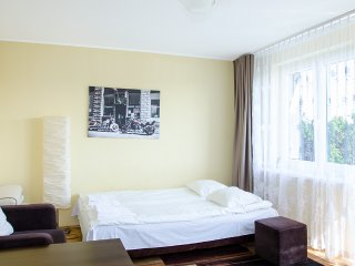 Bright Apartment with Internet Access and Television - Buzdyak vacation rentals