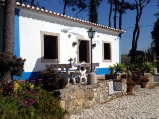 Romantic House with Balcony and Fireplace - Sintra vacation rentals
