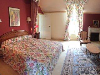 "Château de Montgoger ""Chambre Perroquets"" - Saint-Épain vacation rentals"