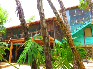 Living in the treetop with amazing views - Placencia vacation rentals