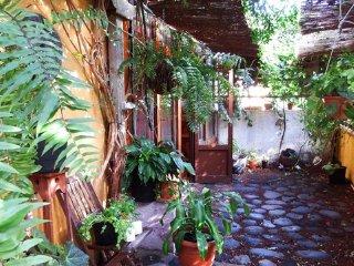 LOFT, the best place to discover LA PALMA!! - Santa Cruz de la Palma vacation rentals