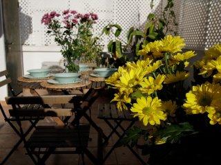 amazing house in santa catalina with terrace - Palma de Mallorca vacation rentals