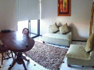 Nice Condo with Internet Access and A/C - Mazatlan vacation rentals