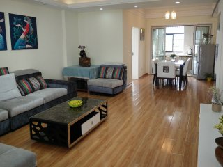 Beautiful Condo with Internet Access and A/C - Zhangjiajie vacation rentals
