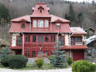 Bright 6 bedroom Villa in Sinaia with A/C - Sinaia vacation rentals