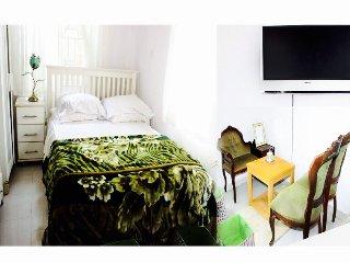 A beautiful spacious one bed apartment in lekki - Lekki vacation rentals