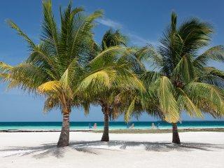 Luxury 5 bedroom Belize villa. - South Water Caye vacation rentals