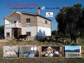 Gio Horses B&B, pernottamenti, colazioni, alloggio - San Nicandro Garganico vacation rentals