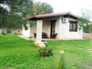 Casa Relax,immersa negli ulivi a 5 minuti dal mare - Sant'Isidoro vacation rentals