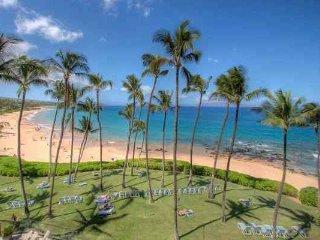 Mana Kai Maui Oceanfront Condo on Superb Beach!! - Kihei vacation rentals
