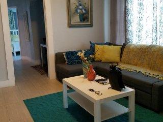 Near downtown and beaches 2br/1bath/LittleHavana-E3 - Coconut Grove vacation rentals