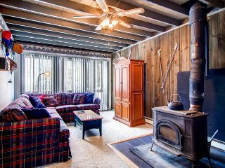 Cozy family-friendly condo, close to skiing and fishing - Dover vacation rentals