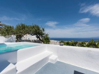 Captains blue traditional villa with pool - Oia vacation rentals