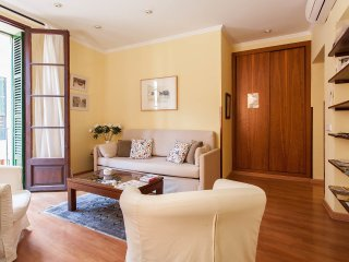 Fantastic central apartment in Palma - Palma de Mallorca vacation rentals