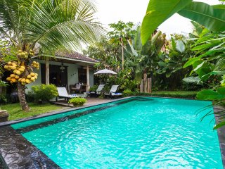 Rumah Sawah Kita (Our Rice-field House) - Ubud vacation rentals