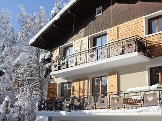 10 Bed Chalet Close to Village & Lifts! - Les Carroz-d'Araches vacation rentals