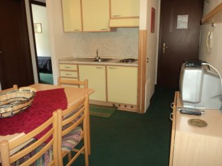 Nice Condo with Parking and Parking Space - Passo Tonale vacation rentals