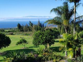 Always In Season Farmstead~Views and Comfort - Hawi vacation rentals
