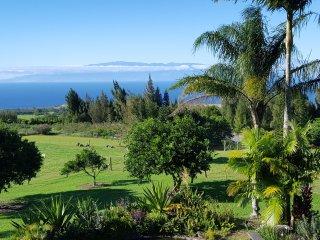 Always In Season Farmstead~Views and Comfort - Hawi vacation rentals